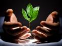 Условия по кредиту «Бизнес-Доверие» от Сбербанк